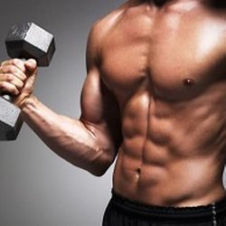Muscle Building Supplements   Pearltrees