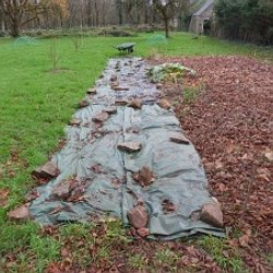 Potager jardin for t nourrici re pearltrees for Jardin foret