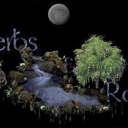 Spiritual Spells: Herbal Magick Book of Shadows | Pearltrees