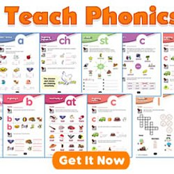 English Lessons for Kids, Multimedia Interactive Materials