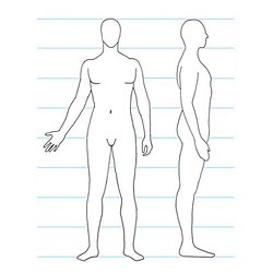 Chapter 2 Human Anatomy And Figure Drawing Pearltrees
