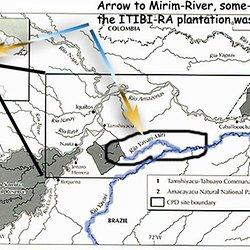 Mirim folyó ültetvény
