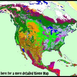 Biomes Of The World   Biome Map