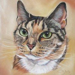Peindre Les Chats En Video Pearltrees