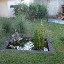 Aquatechnobel : le bassin de jardin des carpe koi et du jardin ...