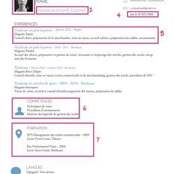 Mon CV en ligne | Pearltrees