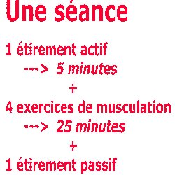 Programme de musculation complet  5d9442b57a8